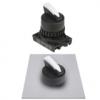 S2SRN-SAW2AM Селекторный переключатель клюв, короткая ручка Shark